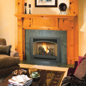 564 Space Saver Gas Fireplace from Avalon
