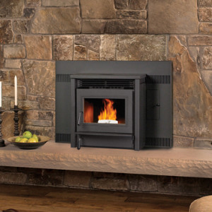 Fireplaces Stoves Inserts Wood Gas Pellet Electric
