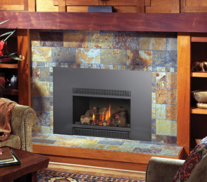 Fireplace Xtrordinair Gas Insert